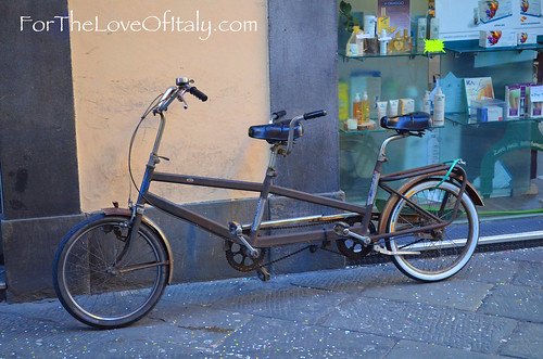for the love of : lucca