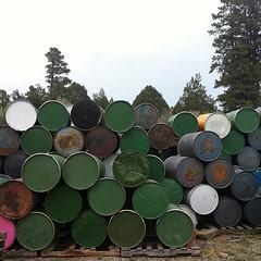 Barrels & Trees