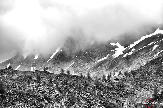 Mist on The Edges