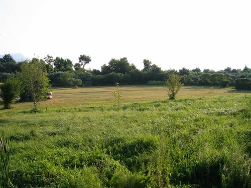 Località Paludi a San Felice del Benaco