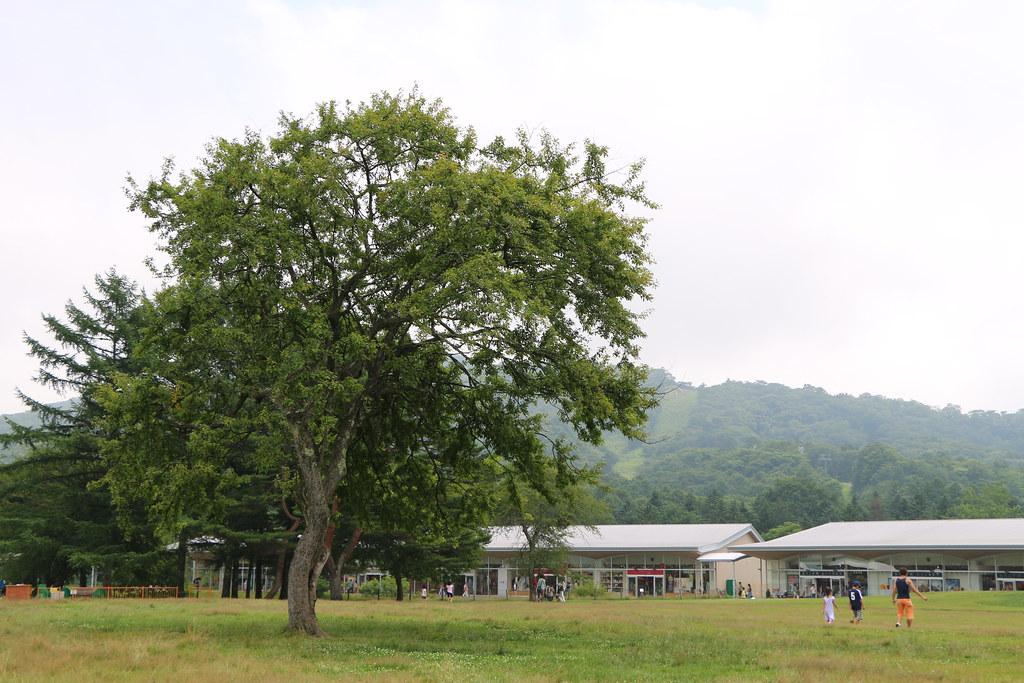 70Day-3 Karuizawa