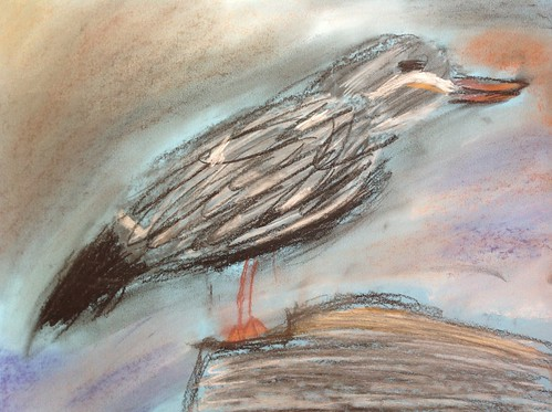 Bird at Artis Zoo, drawn by Barien (11 years)