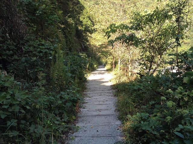 旧福知山線廃線跡-ハイキング道