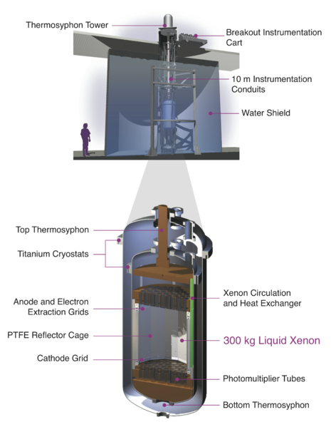 Scientists announce first results from LUX dark matter detector