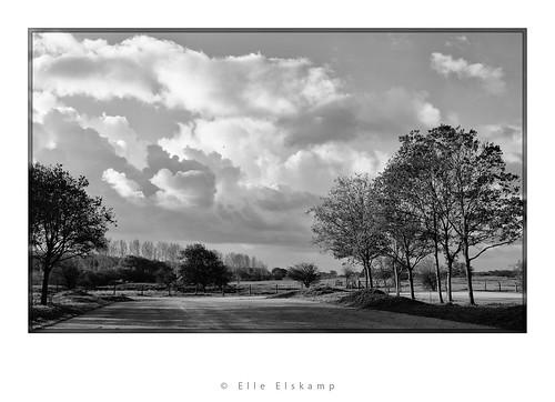 Amsterdamse waterleiding duinen by koorelle
