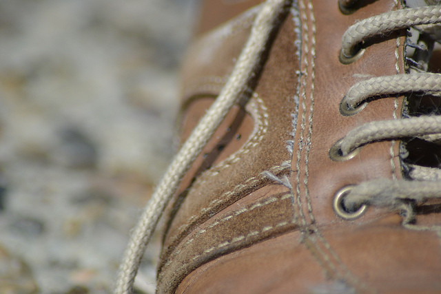 Old brown shoe by hcorper, on Flickr