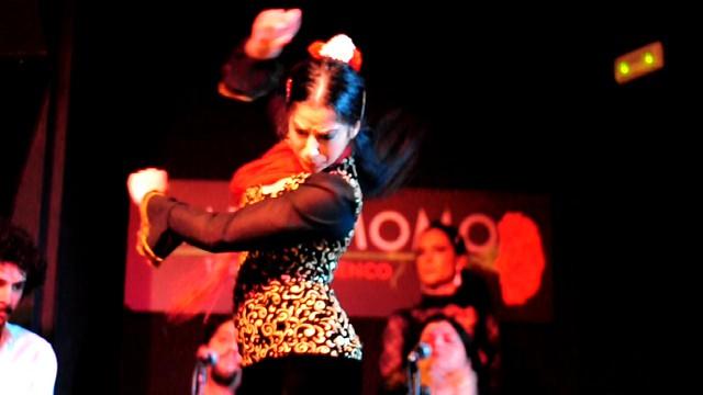 Sarai, disfrutando con su arte encima del Tablao Pasión por el flamenco en el Tablao Cardamomo de Madrid - 11499364175 6fdd89285b z - Pasión por el flamenco en el Tablao Cardamomo de Madrid