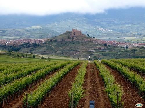 La Rioja-Briones desde el Museo del vino