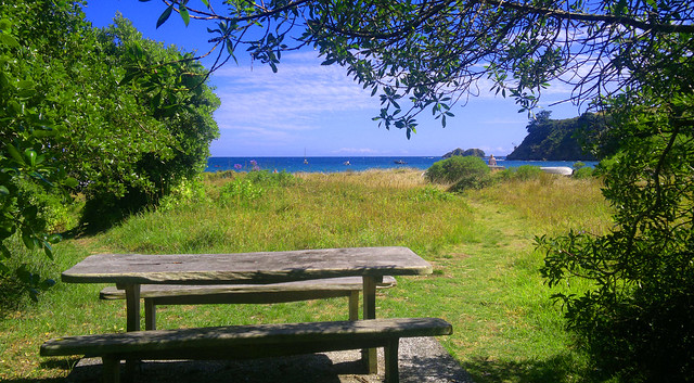 Palm Beach (Waiheke, NZ) Picnic Table