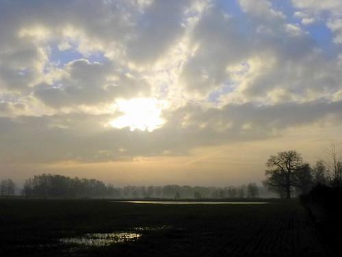 mist germany deutschland meadows wiese schleswigholstein dunst norddeutschland barmstedt