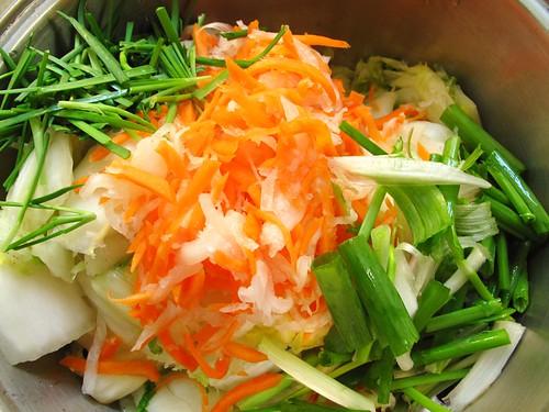 IMG_1492 切丝白萝卜和红萝卜,韭菜和青葱