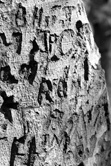 Carving Messages