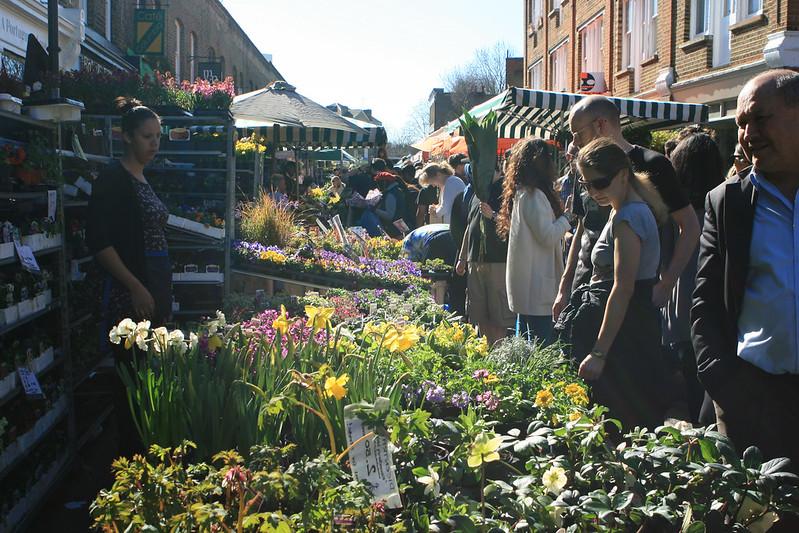 Flower Market 190
