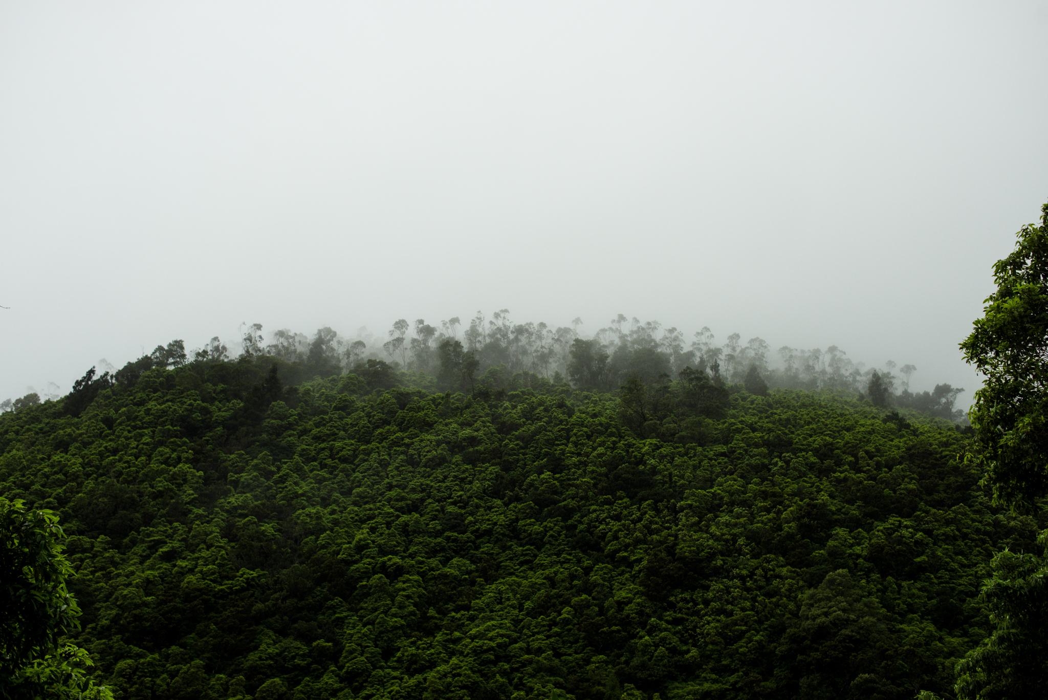 Lagoa de Fogo rossz időben felhőkbe burkolózik