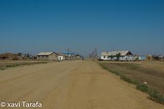 Altai-166-3959