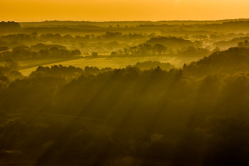 corfecastle dorset purbeckhills isleofpurbeck mist treetops shadows early sunrise dawn