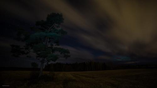 suomi finland forest kuusankoski kouvola luonto light landscape long exposure europe photography puu pitkä valotus valo sky taivas tree tumma pilvi liike clouds cloud pelto field mänty pine lonely lightpainting valomaalaus aurora borealis revontulet