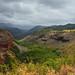 Hanapepe Valley Lookout - Kauai, Hawaii (DTD_2135)