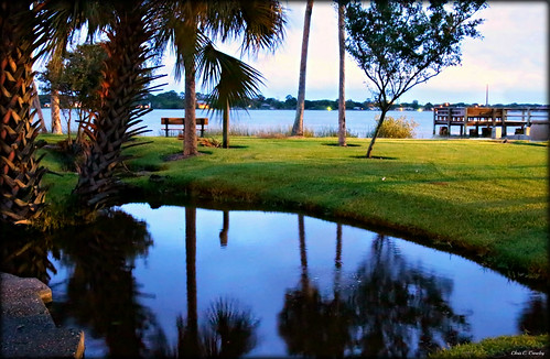 amesparkattwilight amespark ormondbeachflorida twilight sundown reflections rive pond halifaxriver palmtrees dock grass outdoors park scenic landscape