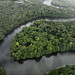 Essequibo River (Peter Stott)
