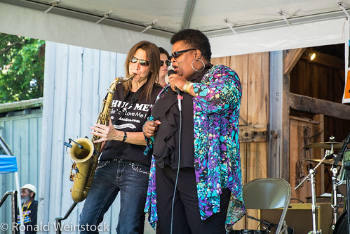 2013-0608 Tinner Hill Blues Festival-1997 by NoVARon