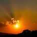 Sunset por bbum
