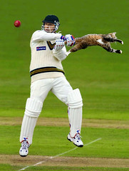 test cricket, sports, team sport, player, bat-and-ball games, ball game, athlete,
