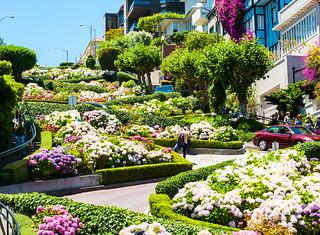 Lombard Street - SanFran2013-8854
