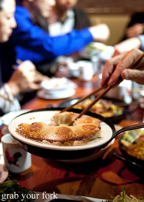 pan fried dumplings at old town hong kong cuisine