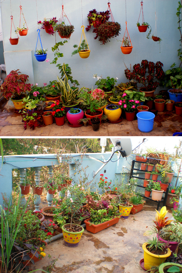Colorful balcony garden idea