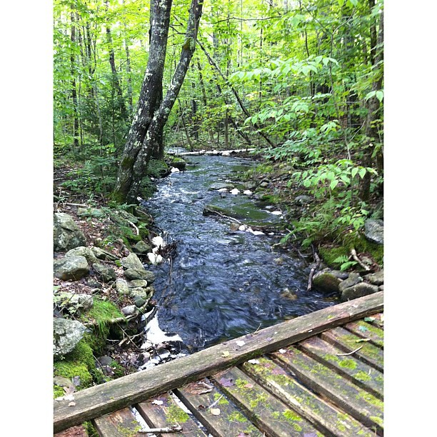 Bradstreet Brook