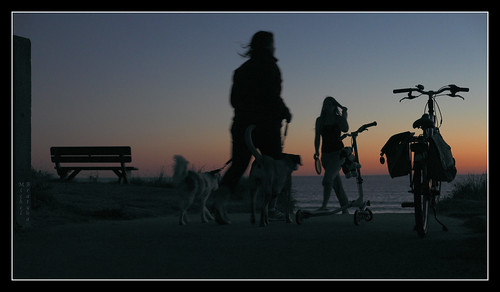 sunset dog france night silhouettes cycle normandie paysage nuit banc vélos ombres twilights crépuscules xe1 fujinonxf1855mmf28rlmois