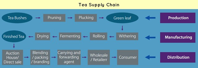 supply chain-Tea