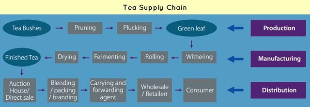 Tea Coffee Supply Chain Management: Upstream & Downstream issues