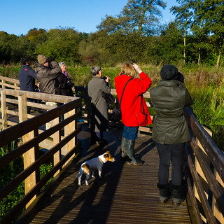 Smestow Valley Wild Walk