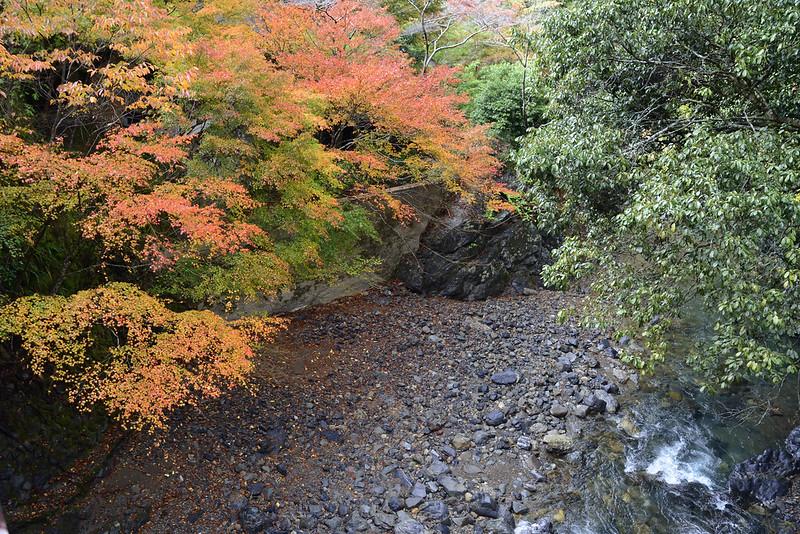 2013.11.13京都 西明寺