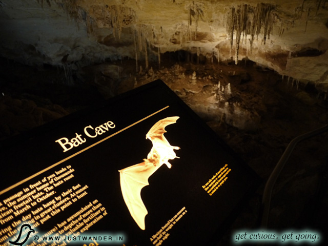 PIC: The true Bat Cave here at Carlsbad Caverns with the opportunity to witness Bat Flights in the summer.