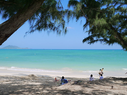 2014.hawaii.ami 109