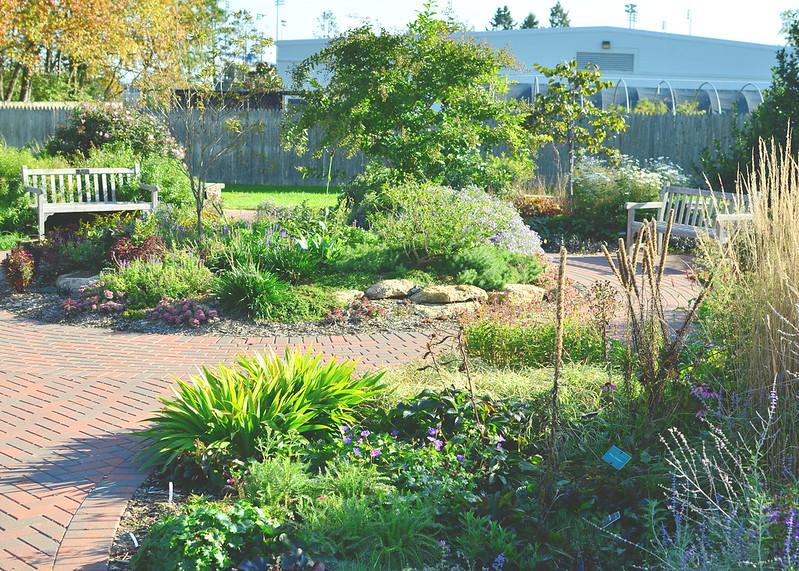 City surveys interest in community garden