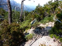 Trace de Quarcitellu : la trace le long de la crête