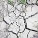 Sequía por booxmiis