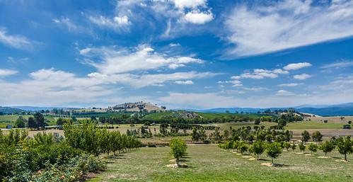2017 australia nikon sanctuary victoria chocolatier clouds d7100 glen grass green healesville summer trees valley yarra
