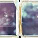 Sakura Impressions by Joann Edmonds