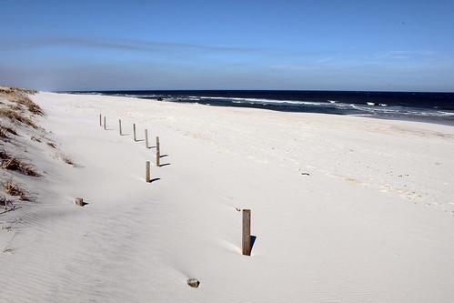 landscape nature sand dunes beach park ocean