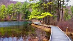 Pleasant Valley Audubon Wildlife Sanctuary