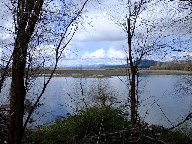 Wood River Wetland