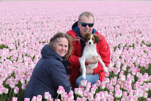 Tulpenroute met Yerke