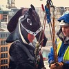 #horses can #abseil - #glasgow #grey #charity #scotland #scottish #extreme #sport #costume #city