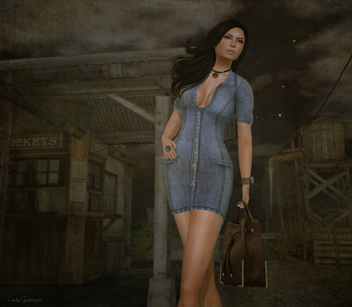 ShabbyCat Denim Dress