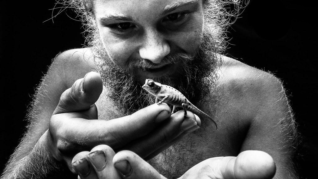 Enjoy The Small Things Female Madagascar Pygmy Chameleon Flickr